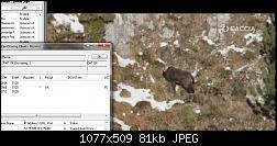 ����� CCcam pseg ����� �������� ����� ����� ����  ���� 2015-2014-12-04_22-22-42-jpg