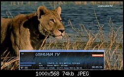 سيرفر فلسطين خاص بمنتدى soft4sat لجميع الباقات لشهر  مارس 2015-ushuaia-tv-24-november-00-05-35-jpg